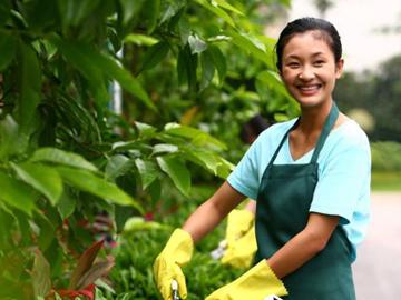 祥生服务为新世纪花园进行卫生整改