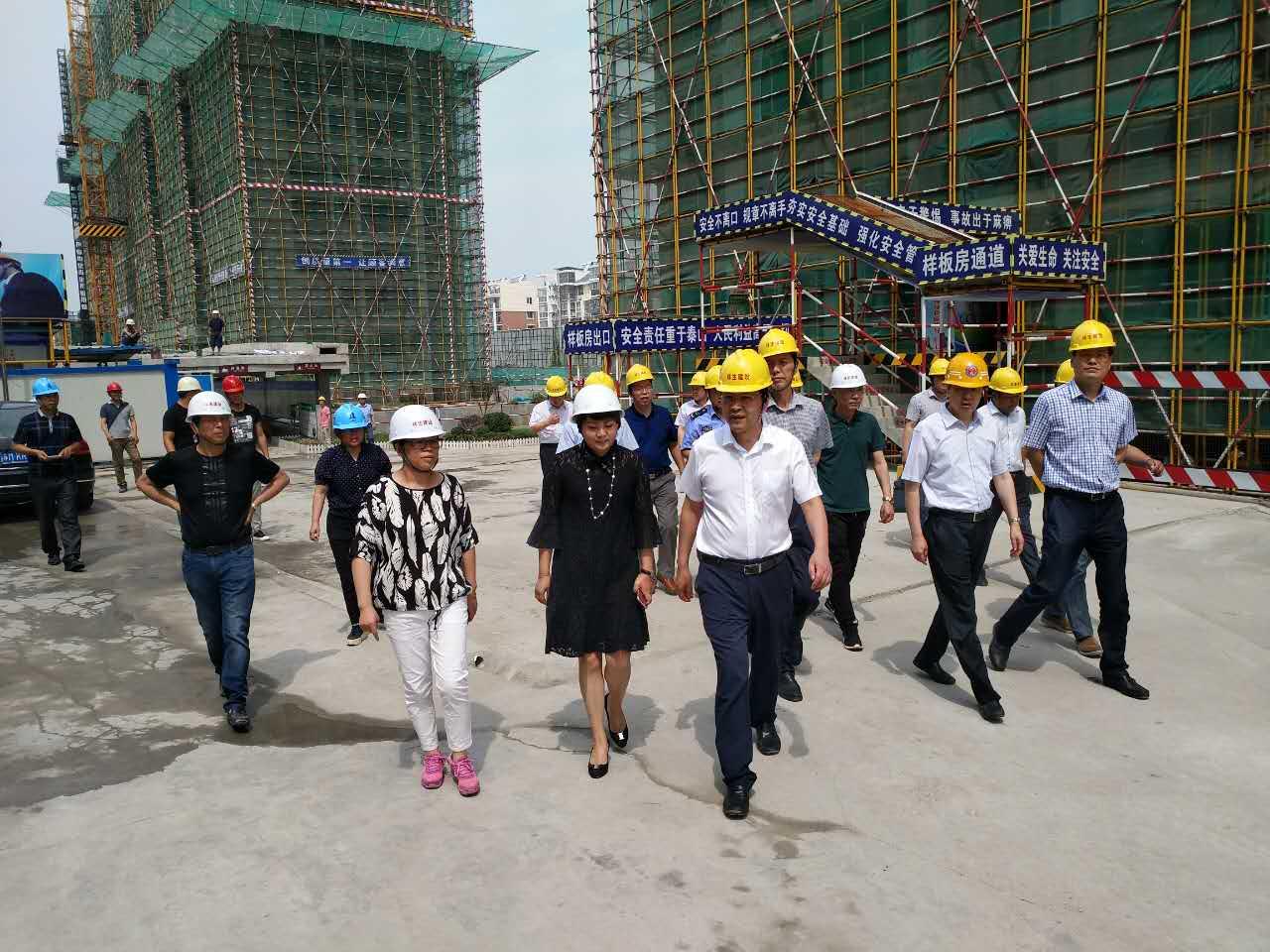 泰兴市市长刘志明视察祥生·未来城