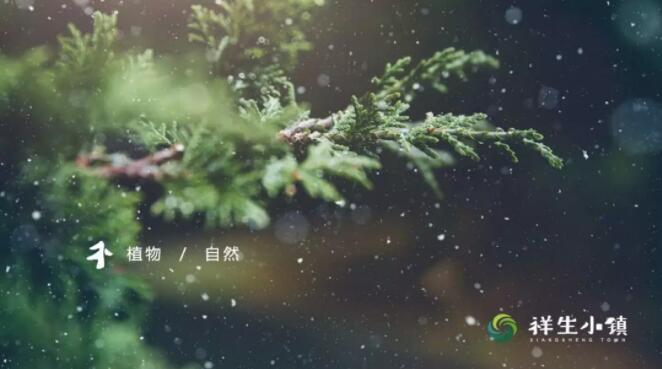 """牵手中国教育电视台 祥生""""朋友圈""""再扩容"""